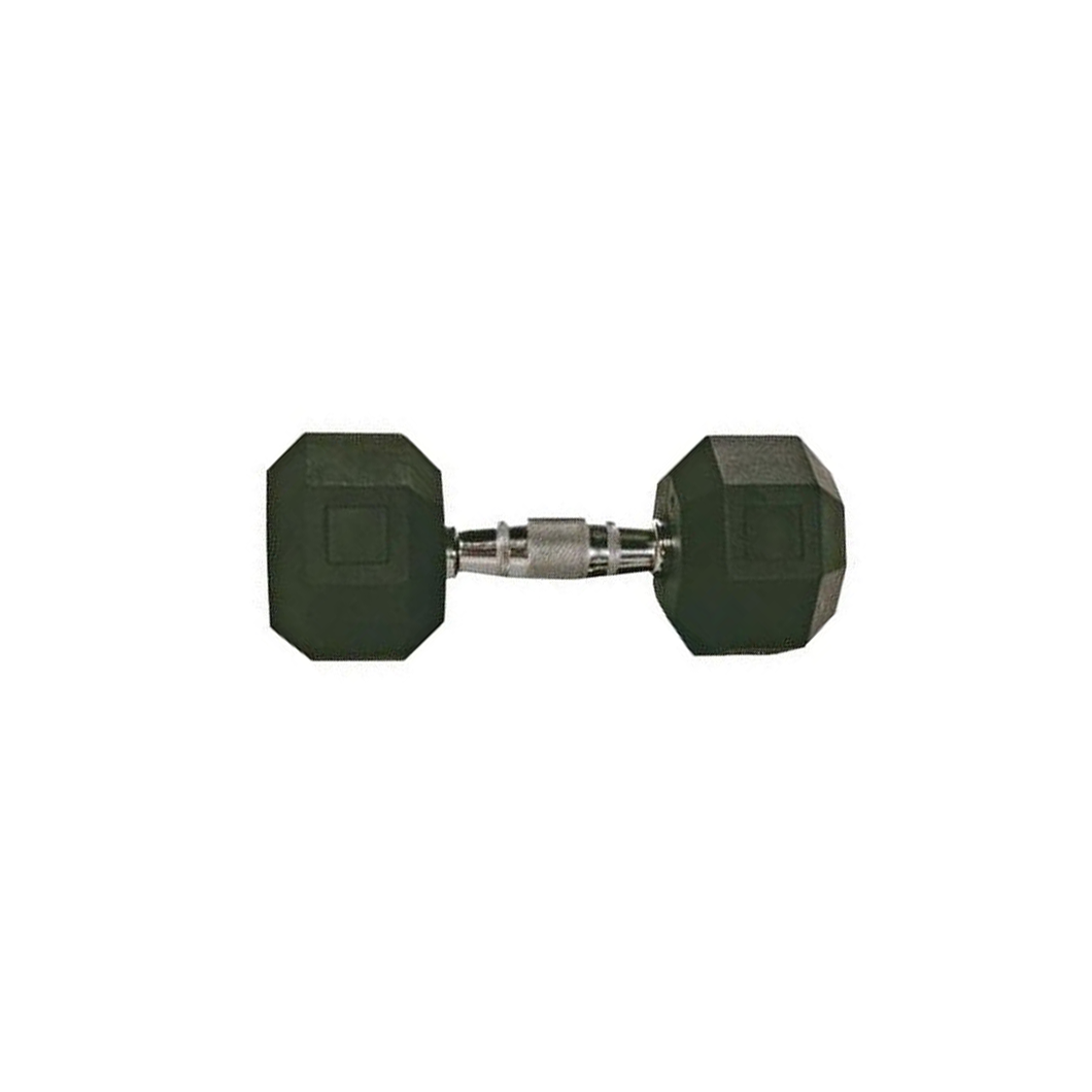 Troy Rubber Hex Dumbbell 10 Lbs.