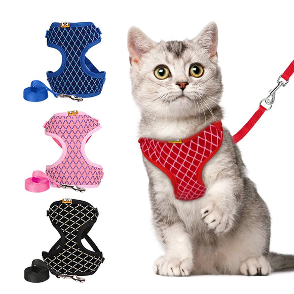 Rhinestone Mesh Cat Harness And Leash