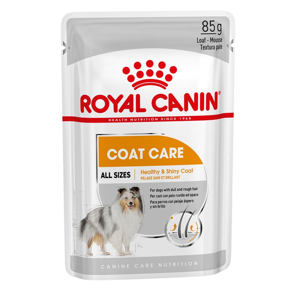 Alimento Úmido Royal Canin Sachê Coat Care 85g