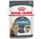 Alimento Úmido Royal Canin Gatos Hairball Care Wet - 85g
