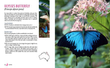 Load image into Gallery viewer, Attracting Butterflies to Your Garden
