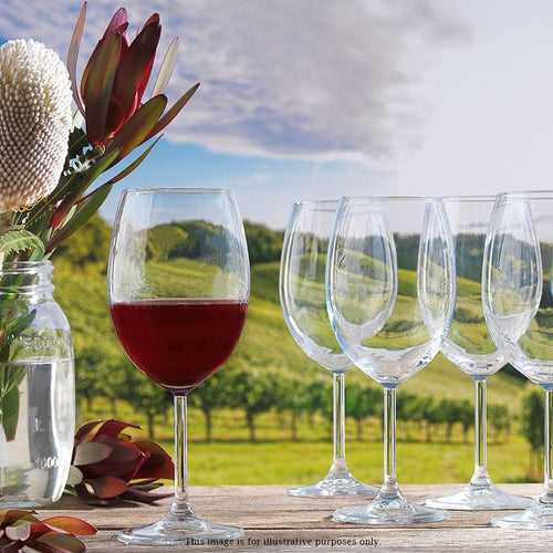 Ecology Otto Crystal Glass 8 Piece Red Wine Glass Set 440ml Clear