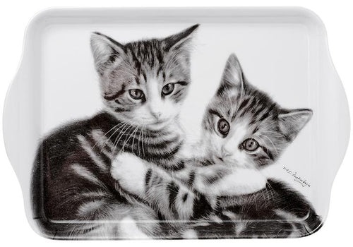 Feline Friends Cuddling Kittens Scatter Tray by Ashdene