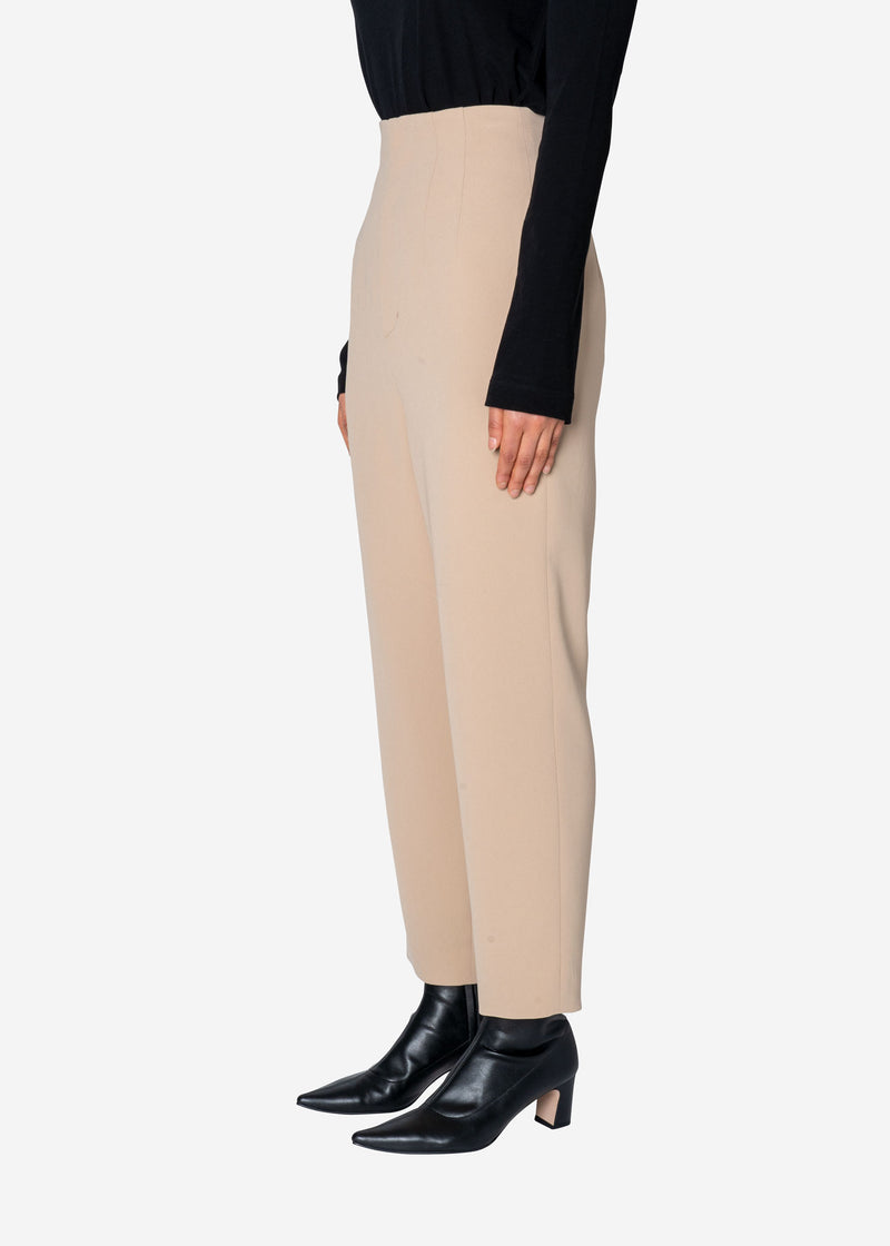Double Stretch Cloth Pants in Beige
