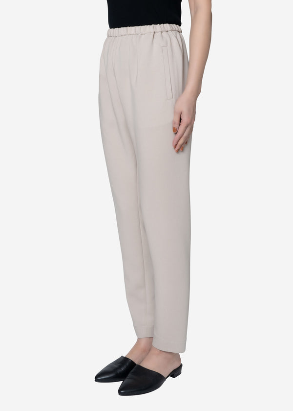 Stretch Double Cloth Pants in Beige