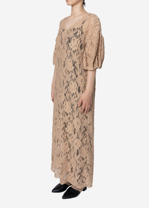 Floral Stretch Lace Dress in Beige