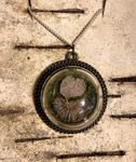 Splitgill Pendant from @wildbirchapothecary