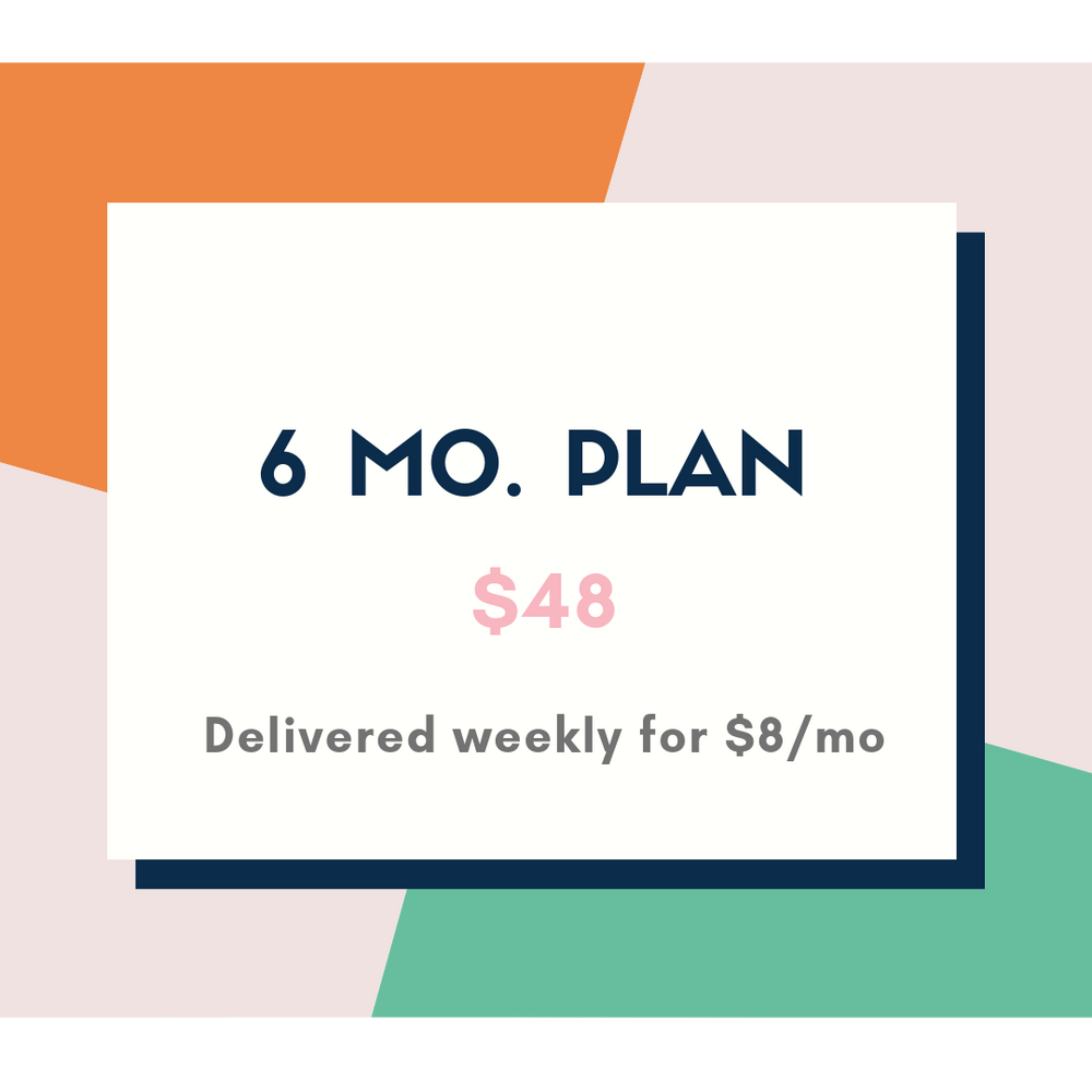6 Month Subscription Plan
