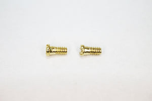Oakley Lizard Screws | Replacement Screws For Oakley Lizard 5113