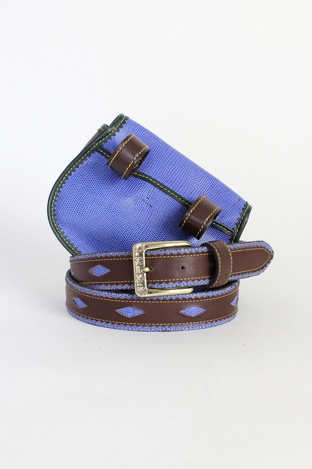 Electric Lizard Belt & Pouch