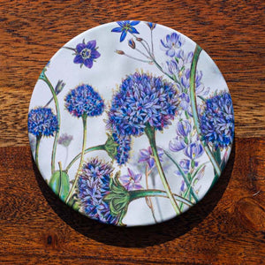 Coaster -  Brunonia Blue Pincushion - Australian Native Flora - Beths Emporium