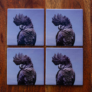 Set of Coasters - Red Tailed Black Cockatoo - Australian Native - Beths Emporium