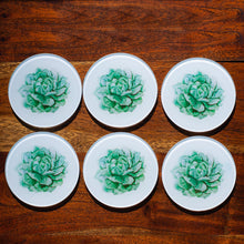 Load image into Gallery viewer, Set of Glass Coasters - Spring Succulents - Beths Emporium