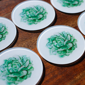 Set of Glass Coasters - Spring Succulents - Beths Emporium