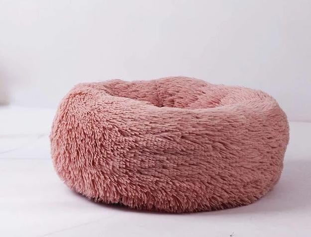 large dog breed bed