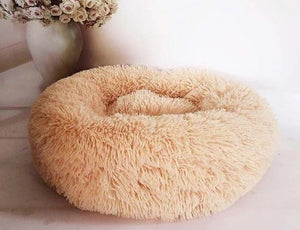 dog bed unique