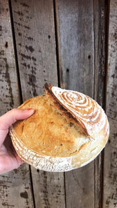 Sourdough