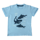 Boy's Half Sleeve Tshirt, Graphic Print, Sky Blue