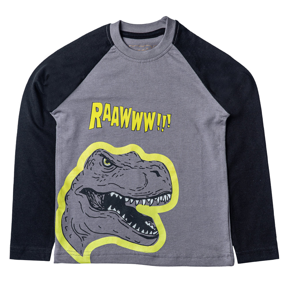 Boys Long Sleeve Graphic T-shirt, Grey