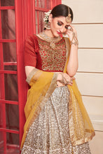 Load image into Gallery viewer, Pleasurable Powder Pink Phantom Silk Metallic Foil & Hand Work With Excellent Lahenga Choli