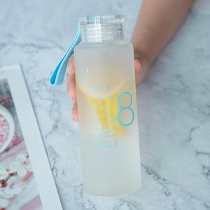 Game Changing Idea EIGHT Frosted Glass Water Bottle