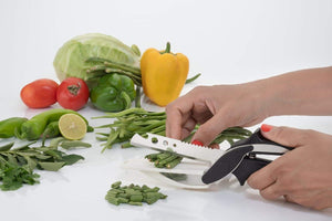 Multi Functional 4 in 1 Vegetable Cutter