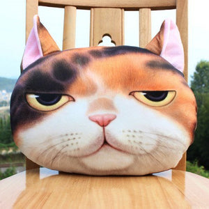 Creative 3D Pillow
