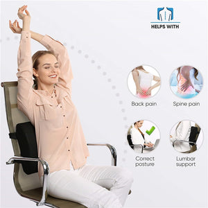 3D Memory Foam Lumbar Support Cushion