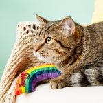 Yeowww! Catnip Rainbow Cat Toy 貓草玩具