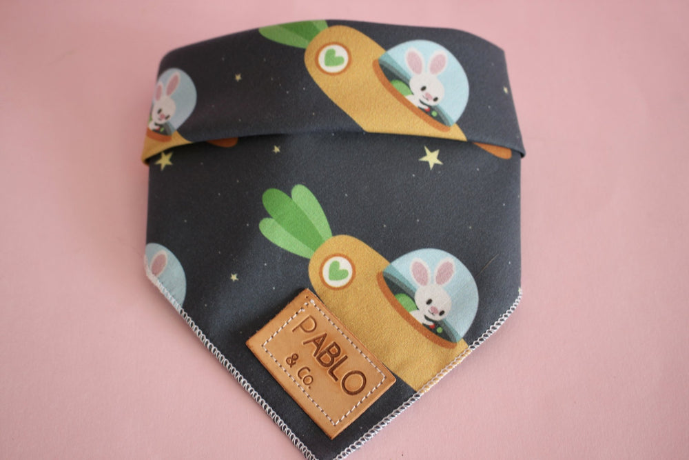 Space Bunny Bandana