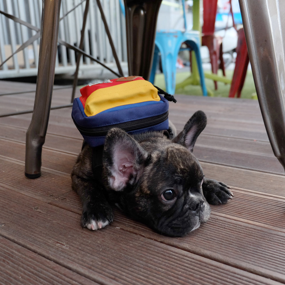BACKPACK HARNESS