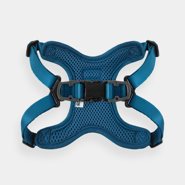 NEW COMFORT HARNESS