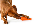 Orbee-Tuff® Carrot Dog Toy