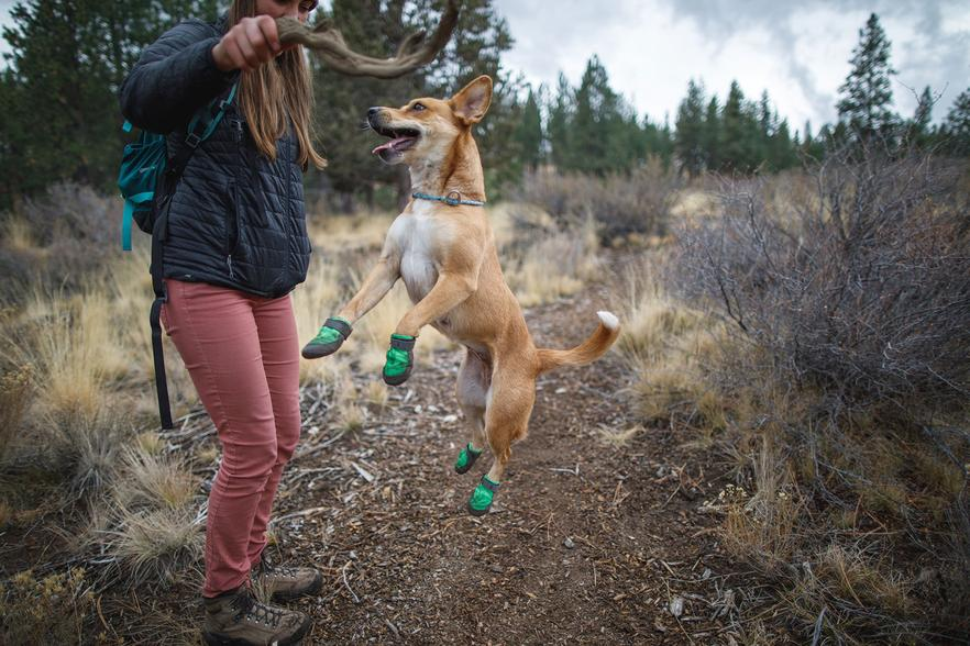 SUMMIT TREX™ Dog Boot PAIRS