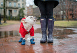 WagWellies™ Dog Boot 雨靴