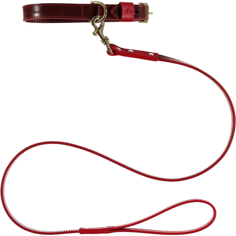 Pimlico Dog Lead Chocolate / Red