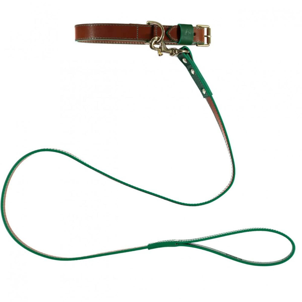 Pimlico Dog Lead Tan/Green