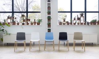 Source International Celebration Chair Collection
