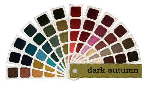 Indigo Tones Dark Autumn Personal Color Swatch Book