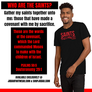Saints of the Most High Official Tshirt (m)