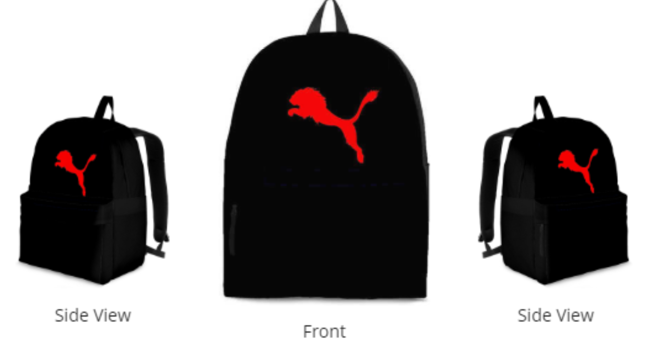 The Official Judah Lion BookBag (r) - Judah Fashions