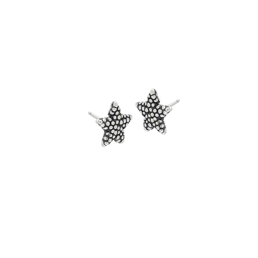 Starfish Mini Post Earrings