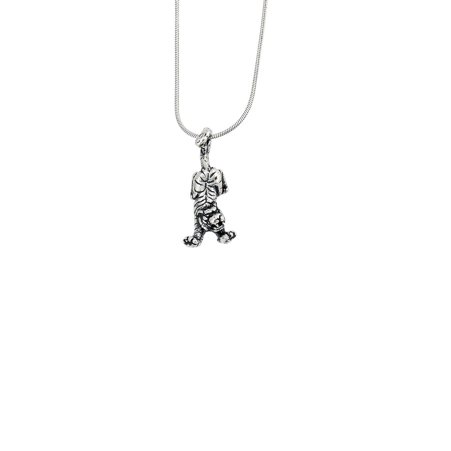 Tiger by the Tail Pendant
