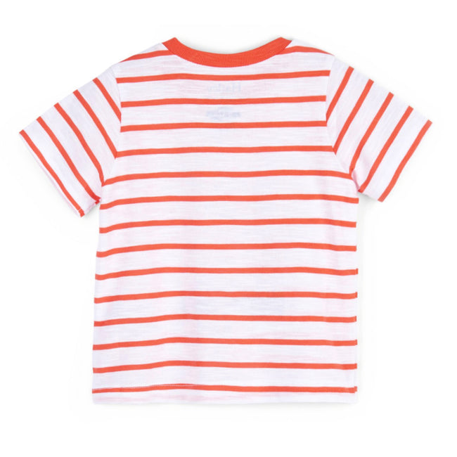 Hatley Baby Boy Pinch Me Crab Orange Stripes Tee Back