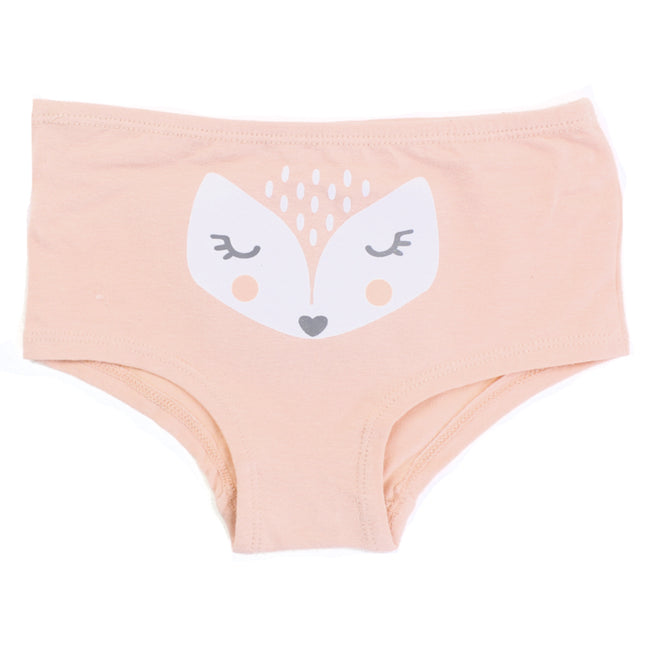 NASS Lingerie for Little Girls Hipster Panties - Pink