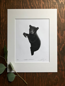 """M'koohns""(Little Bear) Limited Edition Print"