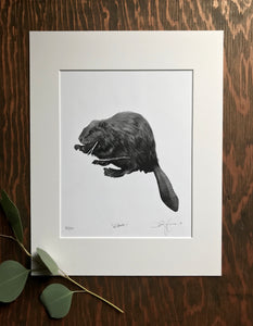 """Amik"" Limited Edition Print"