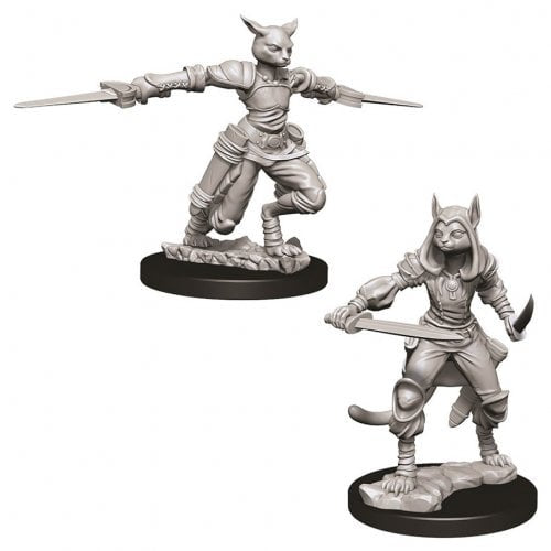 DND UNPAINTED MINIS WV9 FEMALE TABAXI ROGUE (144)