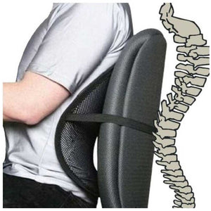 Generic Mesh Ventilation Back Rest With Lumbar Support