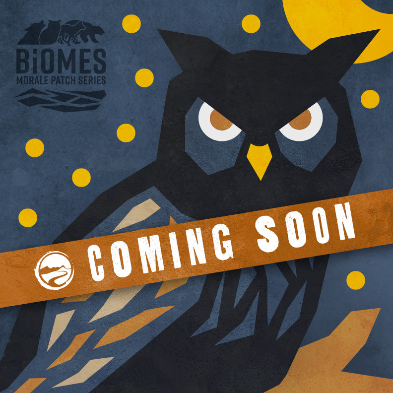 Desert Owl patch (Biome Two) - from the Biomes morale patch series from Blue Ridge Overland Gear